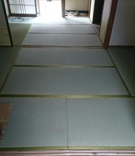 sakurai1.JPG